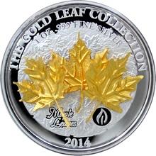 Stříbrná mince 3D Zlatý Maple Leaf 1 Oz Gold Leaf Collection 2014 Proof