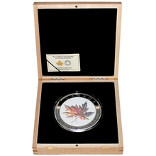 Stříbrná mince 1 Kg Maple Leaf Forever 2015 Proof (.9999)