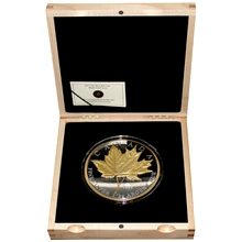 Stříbrná mince 1 Kg Maple Leaf Forever 2013 Proof (.9999)