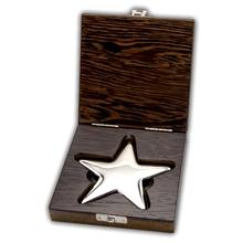 500g LEV - Hvězda Investiční stříbrný slitek