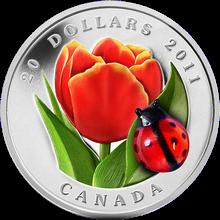 Stříbrná mince Tulipán se skleněnou beruškou 2011 Proof