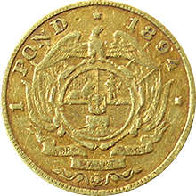 Zlatá mince 1 Pond Paul Kruger 1894