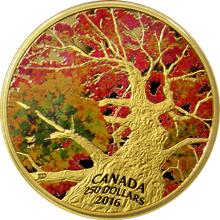 Zlatá minca 2 Oz Klenba javoru: Kaleidoskop barev 2016 Proof