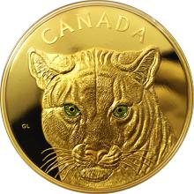 Zlatá minca 1 Kg Očami pumy 2015 Proof