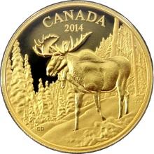 Zlatá minca Vznešený los 2014 Proof (.99999)