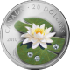 Stříbrná mince Leknín 2010 Proof