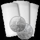 Stříbrná investiční mince Mexico Libertad 1 Oz - Investiční Paket 100 Kusů