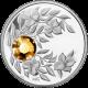 Stříbrná mince Listopad Narozeninový krystal (Topaz) 2012 Proof