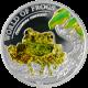 Stříbrná mince Žába Mechová 2011 Proof Palau